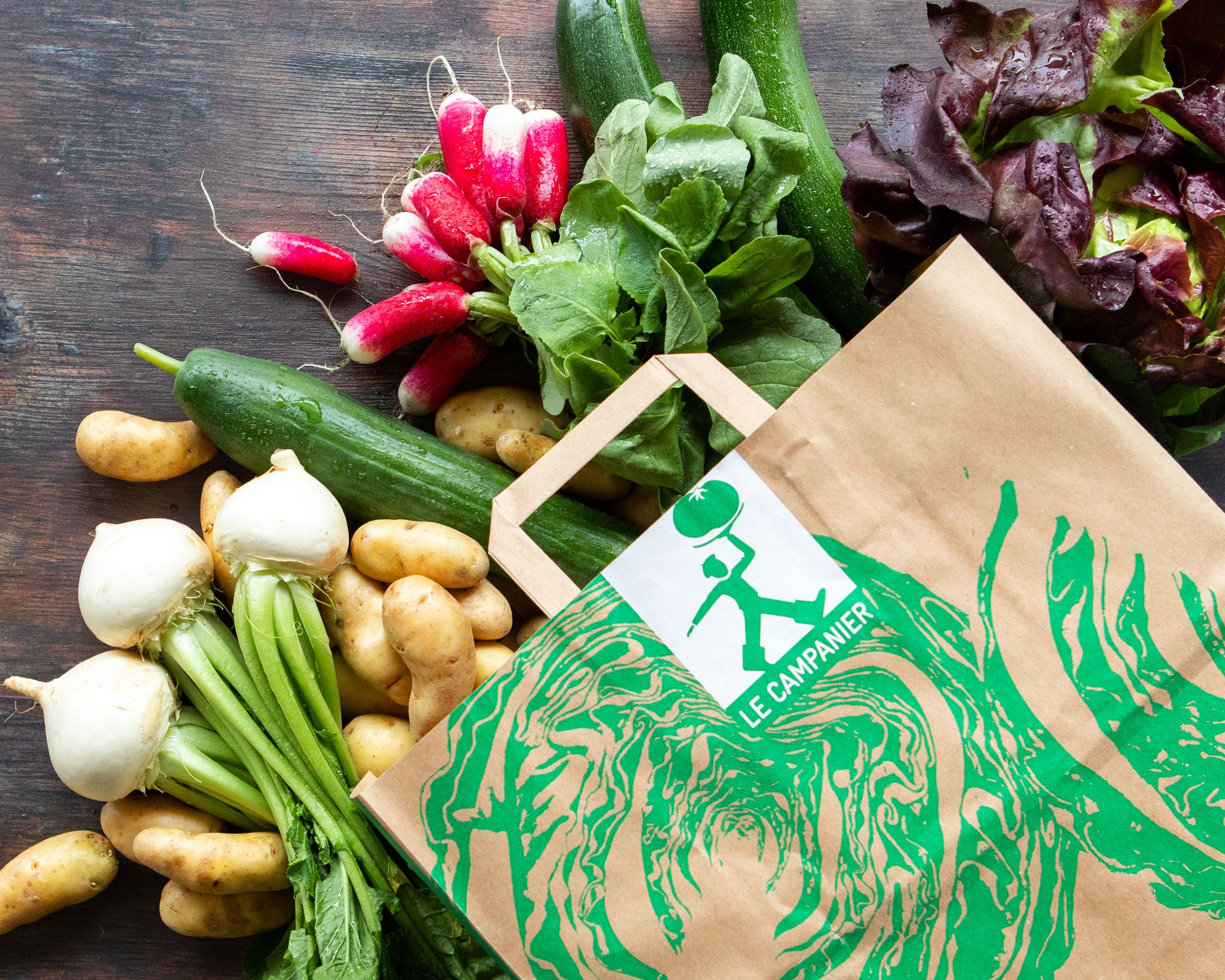 sac de légumes bio : pommes de terre, radis, salade, courgettes, concombre et navets botte